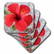 click on Scarlet Hibiscus - bunga raya, flower, flowers, hibiscus, hibiscus rosa sinensis, plant, plants to enlarge!