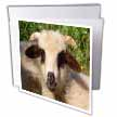 click on Baa Mine - animal, ewe, love, fun, love, valentine, cute to enlarge!
