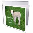 click on New Arrival - animal, ewe, love, fun, lovecute, lamb, lambs to enlarge!