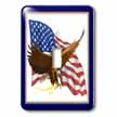 click on Eagle with Flag to enlarge!