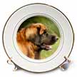 click on Leonberger Portrait to enlarge!